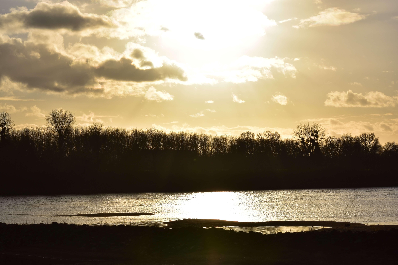 Vair sur Loire – La Loire